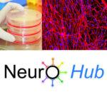 NeuroHub